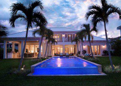 Azure palm trail